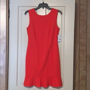 **BRAND NEW** Zara Dress